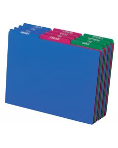Poly File Guide Sets, Letter size, Assorted